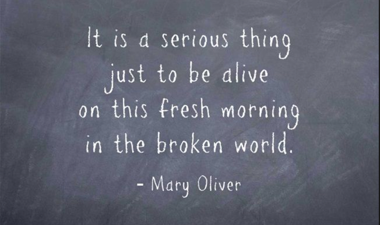 Mary Oliver Broken World